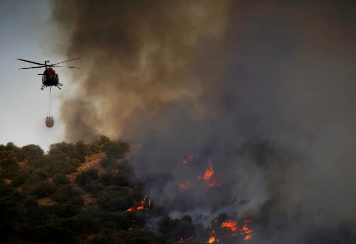Forest fire destroys over 2000 hectares of land in Spain