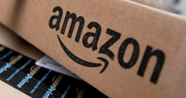 Environmentalists target Amazon in France, demand measures to protect climate change
