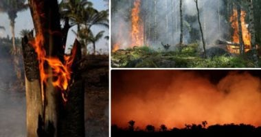 Azevedo: America does not provide concrete assistance to fight Amazon fires