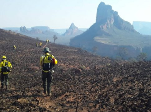 Wildfires in the Amazon: worries is become global