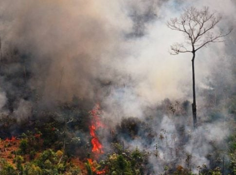 NASA: Amazon forest fires increase carbon monoxide in the atmosphere