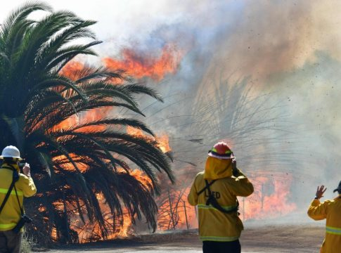 Los Angeles: Forest fires spreads 80 hectares,1300 residents evacuated