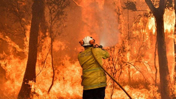 Australia bushfires: Firefighter killed and two injured in New South Wales